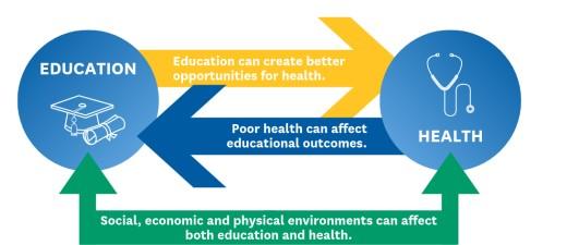 تأثير التعليم على الفيزيولوجيا