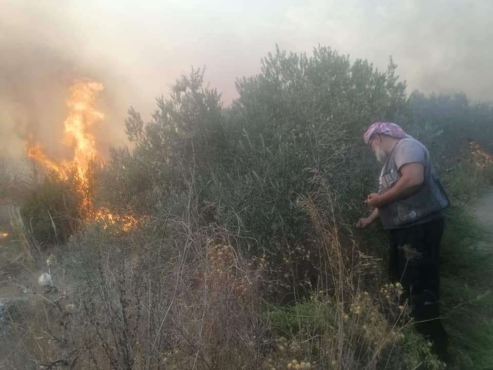 """""""بس نبيع الموسم"""".. مزارعون احترقت أحلامهم مع أشجارهم"""