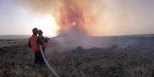 مدير زراعة حمص :11 ألف شجرة مثمرة و2500 دونم التقديرات الأولية لأضرار حرائق ريف حمص الغربي