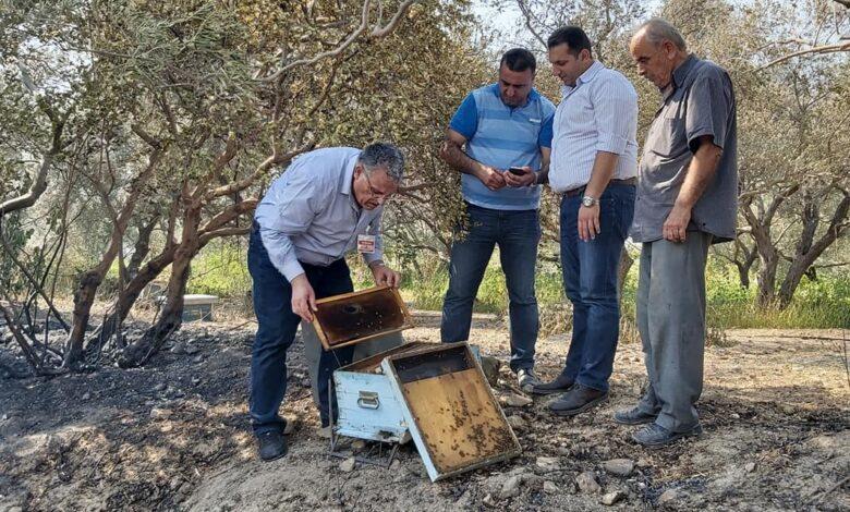 وزير الزراعة : أسبوع لحصر أضرار الحرائق