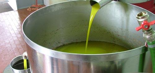 الطلب المحلي نحو 100 ألف طن.. تتوقعات بإنتاج 140 ألف طن من زيت الزيتون