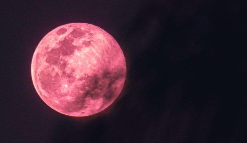 استعدوا لرؤية القمر الزهري العملاق في 26 من الشهر الجاري