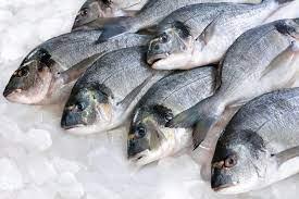 ارتفاع في أسعار بعض أنواع الأسماك والسبب القمر