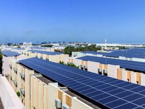 خبير يدعو شركات البناء لتحويل واجهات الأبنية إلى ألواح طاقة شمسية