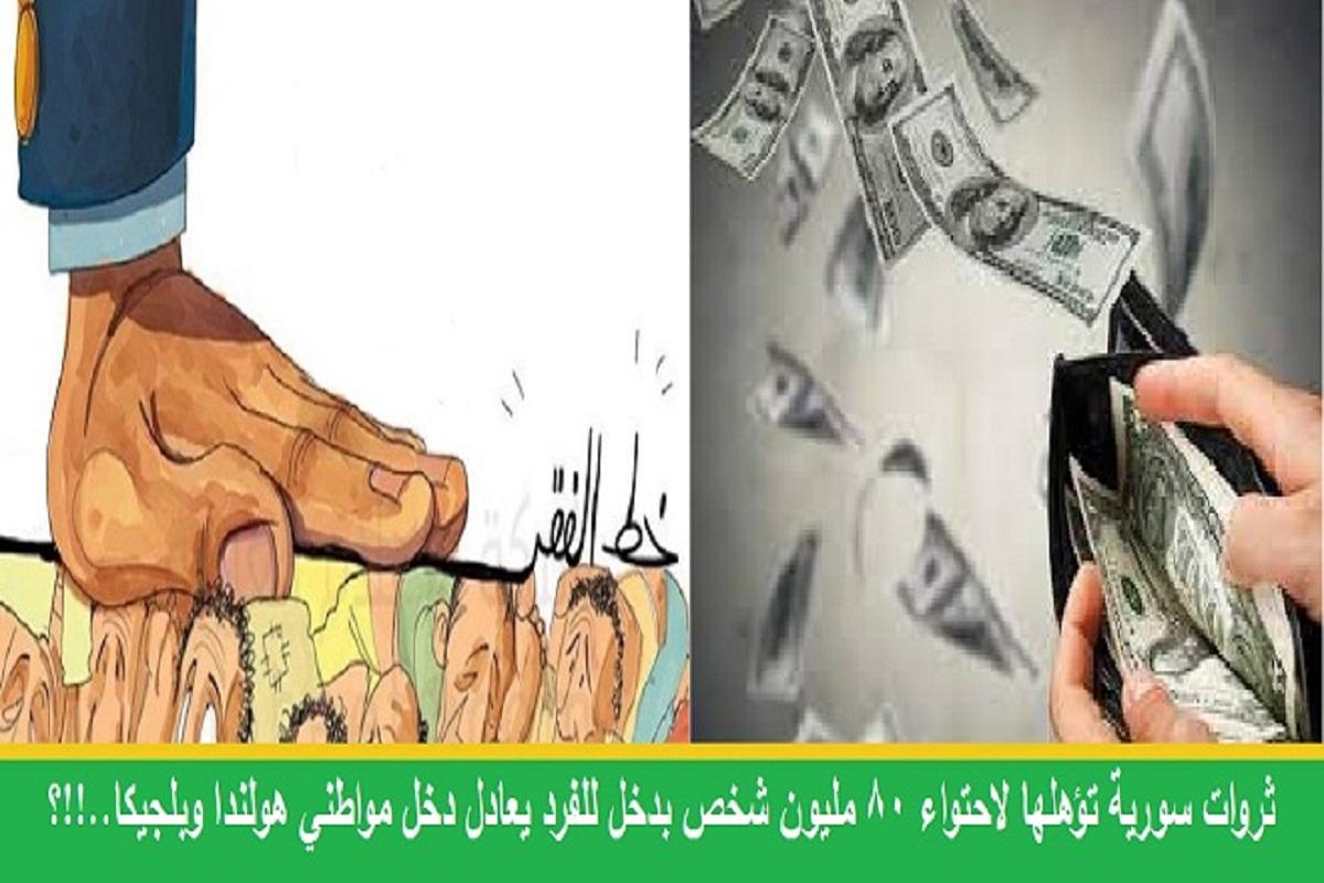 كاتب امريكي:  ثروات سورية تؤهلها لاحتواء 80 مليون شخص بدخل للفرد يعادل دخل مواطني هولندا وبلجيكا..!!؟