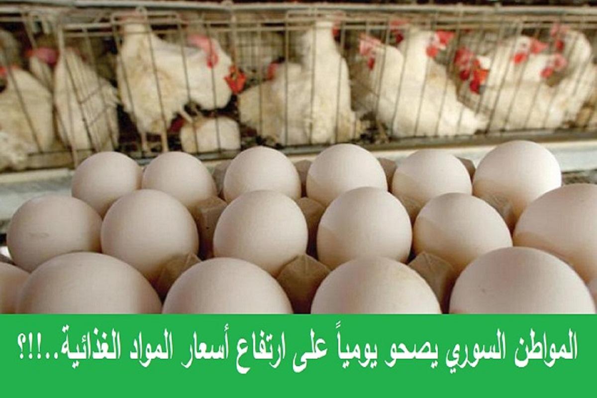 سعر الفروج ربع راتب الموظف.. و البيض يناهز 10 آلاف ليرة ..؟