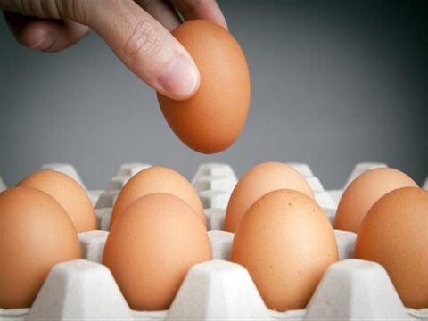 سعر البيضة الواحدة يصل لحدود 500 ليرة! … لجنة مربي الدواجن : السبب جشع التجار .. سعر البيض ثابت في المداجن !
